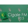 Cigale 90.5 FM