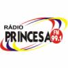 Rádio Princesa 99.1 FM