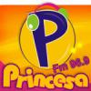 Rádio Princesa 96.9 FM