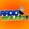 Rádio Satélite 104.9 FM