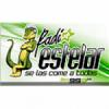 Radio Estelar 99.3 FM