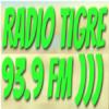 Tigre 93.9 FM