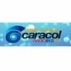 Radio Maxima Caracol 91.3 FM