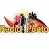 Punto 88.1 FM