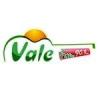 Rádio Vale 90.9 FM