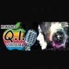 Rádio Q.I. Virtual
