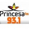 Rádio Princesa 93.1 FM