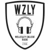 Radio WZLY 91.5 FM