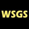 Radio WSGS 101.1 FM