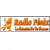 Radio Fénix