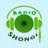 Radio Shongi