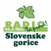 Radio Slovenske Gorice 96.4 FM