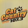 WPUR 107.3 FM