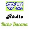Web Rádio Bicho Bacana