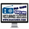 Web Rádio Guaçu Mix