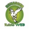 Renascer Rádio Web