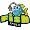 Radio Fish 95.9 FM