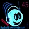 Rádio 45 Sertaneja