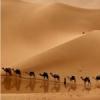 Radio Miled Music Árabe