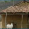 Cabirote Webradio