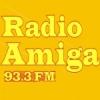 Amiga 93.3 FM