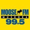 Radio CFBG 99.5 FM