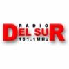 Radio Del Sur 101.1 FM