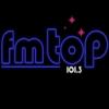 Radio Top 101.3 FM