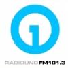 Radio Uno 101.3 FM