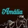 Rádio Amália 92 FM