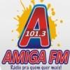 Rádio Amiga 101.3 FM