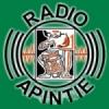 Radio Apintie 97.1 FM