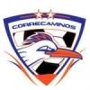 Correcaminos UAT/MEX