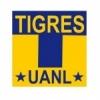 Tigres/MEX