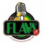 Logo da emissora Radio Flava 87.7 FM