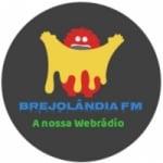 Logo da emissora Rádio Brejolândia