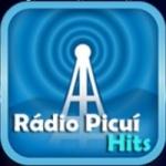 Logo da emissora Rádio Picuí Hits
