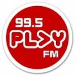 Logo da emissora Radio DWRT Play 99.5 FM