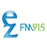 Logo da emissora Radio FM 91.5