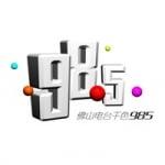 Logo da emissora Radio Foshan Music 98.5 FM