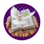 Logo da emissora Rádio Edificação