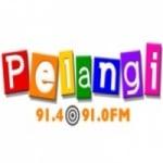 Logo da emissora Radio Pelangi 91.4 FM