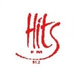 Logo da emissora Hits 91.2 FM