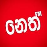 Logo da emissora Radio Neth 95.0 FM