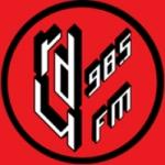 Logo da emissora Radio RDU 98.5 FM