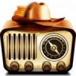Logo da emissora Web Rádio FM Brasil