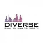 Logo da emissora Radio Diverse 102.8 FM