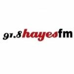 Logo da emissora Radio Hayes 91.8 FM