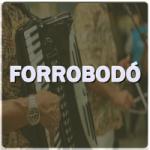 Logo da emissora Rádio Forrobodó