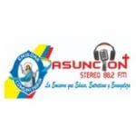 Logo da emissora Asunción Stereo 88.2 FM